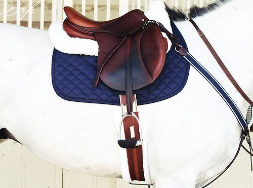 Navy and white tack. Love.