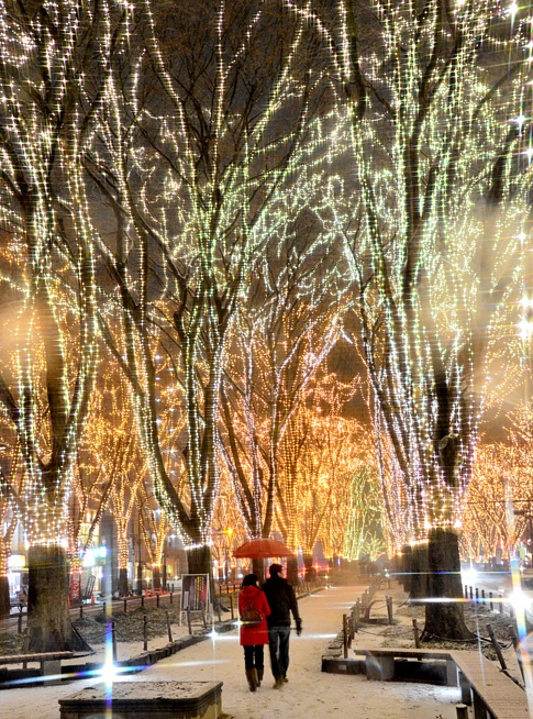 lights galore are to be seen at longwood gardens in kennett pa at christmastime - Longwood Gardens Christmas Lights