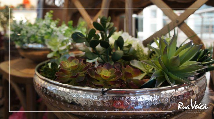 Arranjo de suculentas em cachepot de alumínio #decoração #suculentas #cachepot