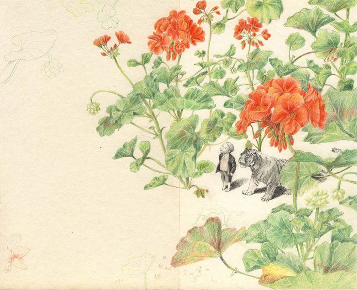 Pinzellades al món: Poesia en les il·lustracions de Joanna Concejo