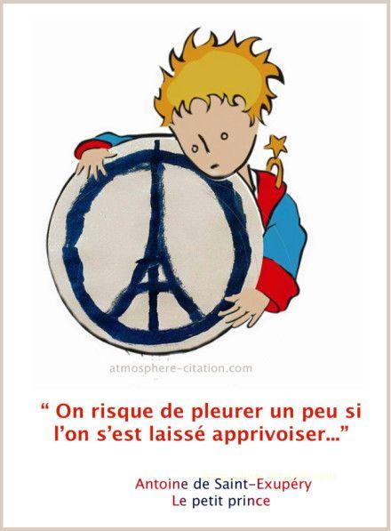 """On risque de pleurer un peu si l'on s'est laissé apprivoiser... Antoine de Saint-Exupéry """"Le petit prince""""."""