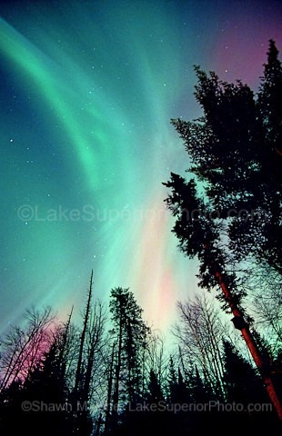 Northern Lights (over lake superior) this would be an add on to my birds tattoo, I need to get it touched up and a backround put in it, Northern Lights it is! :]