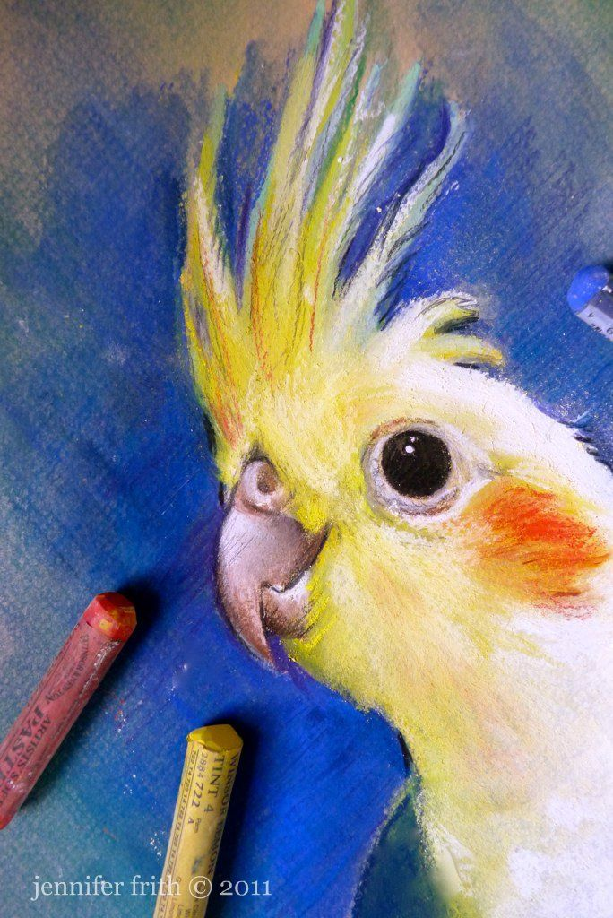 """""""Cockatiel"""" in pastel ~ would be cool with a chalkboard talk bubble for kids room and the bird in louder colors."""