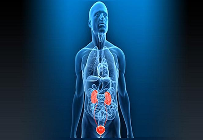RG Hospital is one of the best Kidney Stone and Urology Hospitals in India. We are providing the best solutions for urological treatment with well trained & experienced Urology Specialist.