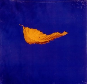 "New Order - ""True Faith""    can't believe this cover is a photograph! All time fav."