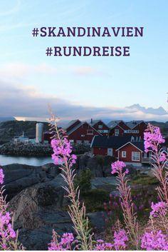 Endlose Fjorde, rote Falunhäuser, zutrauliche Rentiere und das imposante Nordkap - Kommen Sie mit auf eine Rundreise durch Skandinavien!  Zum Blogartikel: https://laender-leute.de/2016/09/30/rundreise-durch-skandinavien-einmal-zum-nordkap-und-zurueck/