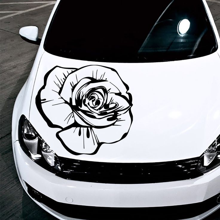 Best Car Decals Images On Pinterest Car Stickers Car Stuff - Vinyl stickers on cars