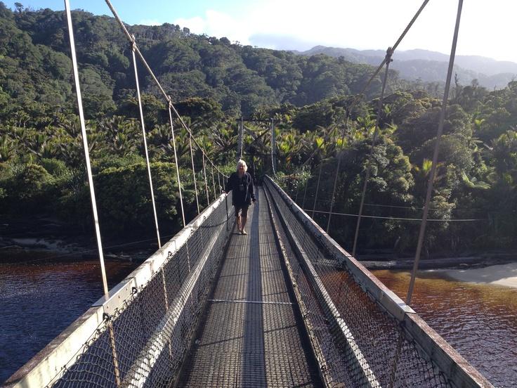 Kohaihai north of Karamea on the heaphy track such a beautiful day for a short walk. South Island