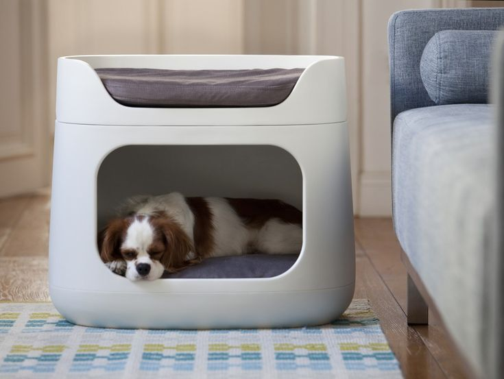 Functional, practical yet stylish, this product is a modular pet furniture piece with the flexibility to work with your family's needs. Designed for cats or dogs (small breeds), Bunkbed is versatile for a range of living options, featuring an enclosed bottom bunk, an open top bunk, and extra parts to convert to a pet carrier or crate.