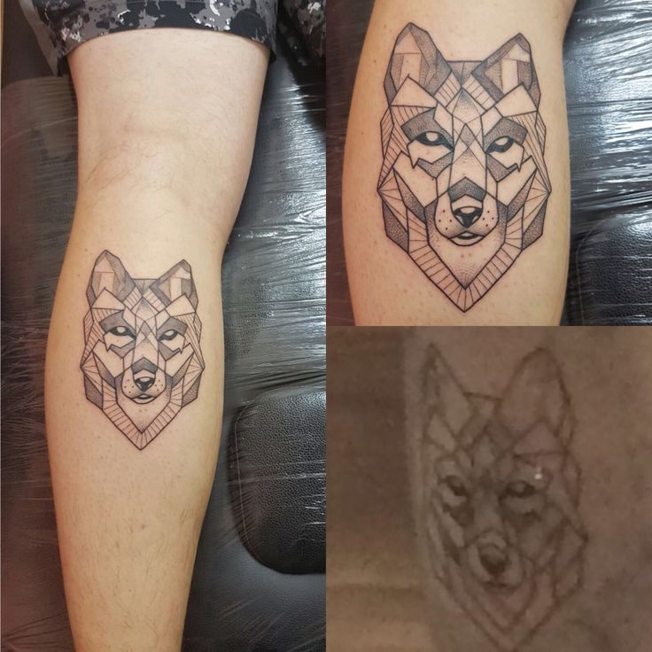 Geometric wolf tattoo (calf) done by Greg Sharp of Southsea Tattoo Co Portsmouth England