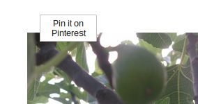 4 Superb Pinterest Extensions For Chrome, With An Extremely Pinnable Start Page Bonus