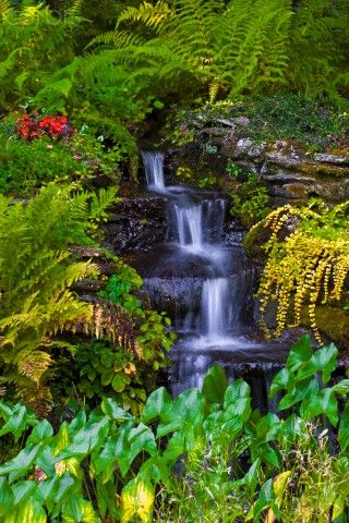 Small waterfall in garden, Sutton, Eastern Townships, Quebec, Canada, North America
