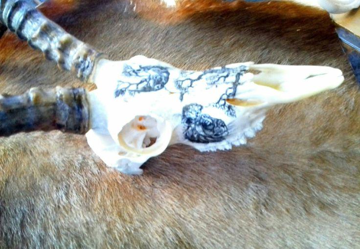 Scrimshawed Impala antelope skull by Alfred Dube.