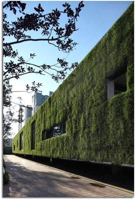 25 best Muros verdes images on Pinterest Vertical gardens, Green