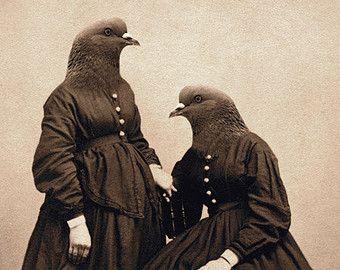 Pigeon Art, Pigeon Sisters, Collage Art, Two Sisters Art, Hybrid, Anthropomorphic Bird Art Print, Rustic Decor