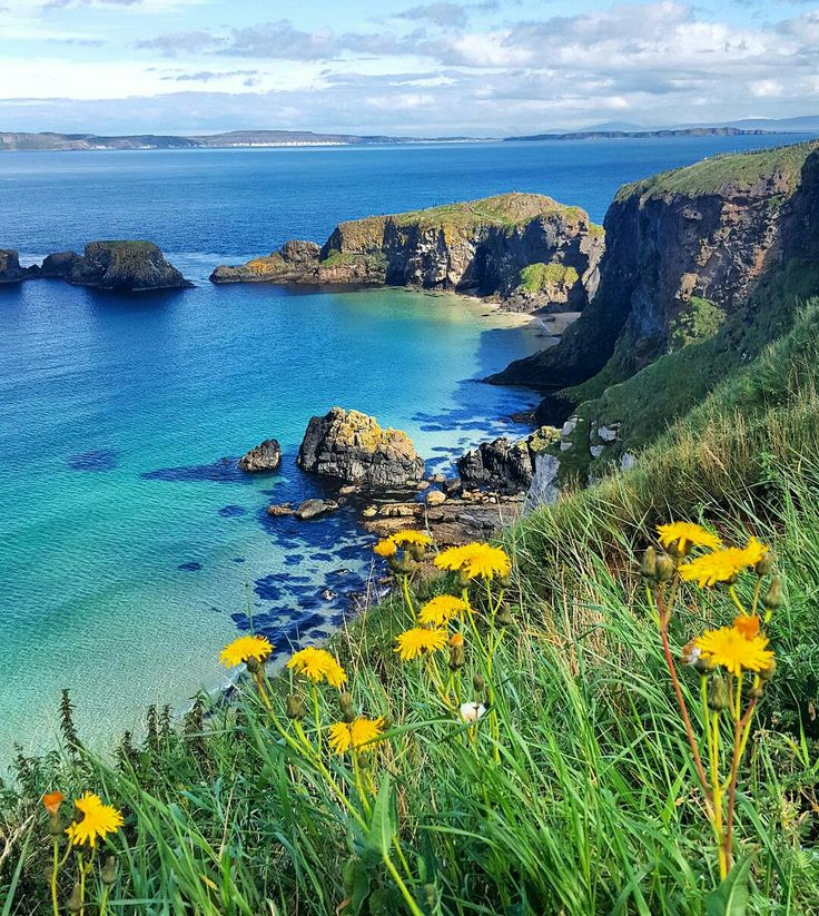 Carrick-a-rede Rope Bridge Northern Ireland on a beautiful sunny day