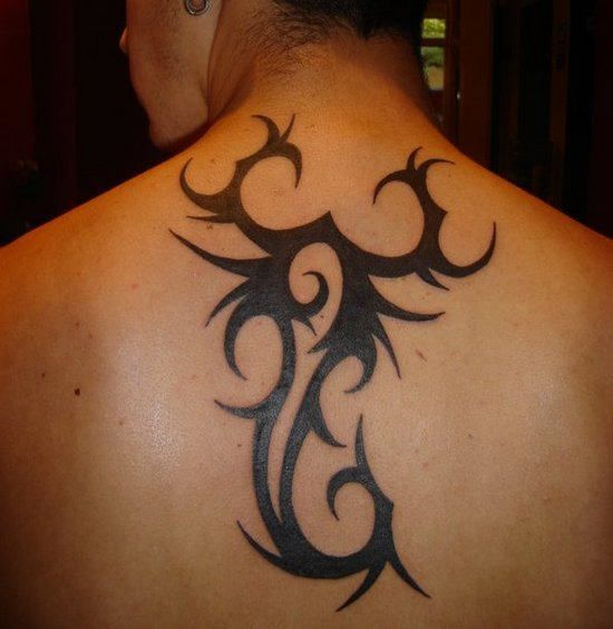 Zodiac Tattoos And Designs: 78 Best Ideas About Scorpio Zodiac Tattoos On Pinterest