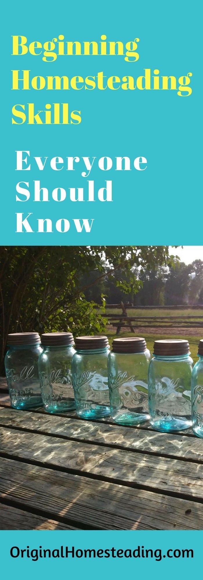 Have a Homesteading Mindset but No Homestead? Do Not Worry.....start learning and practicing Homesteading Skills today!!!