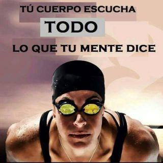 ¡ Imágenes imprescindibles y motivadoras para cualquier nadador ! - Open Water Basque #natación