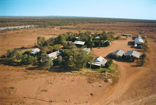 South-west Queensland's Nockatunga Station is holding its own, despite the drought, thanks to three water sources, organic-beef production and experienced, dedicated staff.