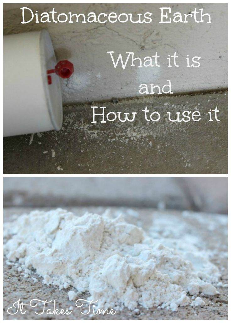 Diatomaceous Earth What It Is And How To Use It Detox How To Use And Natural
