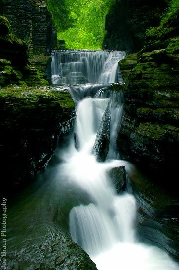 Definitely on the bucket list: The Finger Lakes