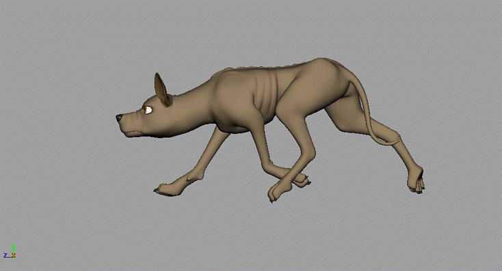 Jess Morris Animador: Quads Animación