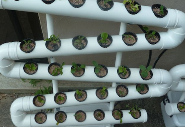 Check out Hydroponic Systems Round Up   33 Best Hydroponic Ideas For your Garden at http://pioneersettler.com/hydroponic-systems-round-up-33-best-hydroponic-ideas-for-your-garden/