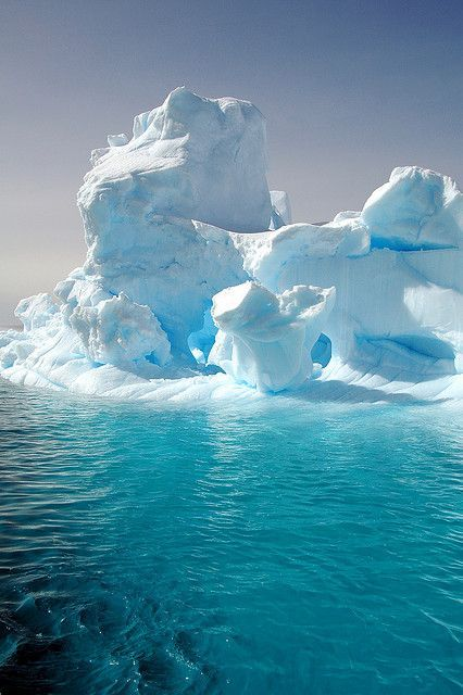 155 best visit antarctica images on pinterest travel for Best places to visit in antarctica
