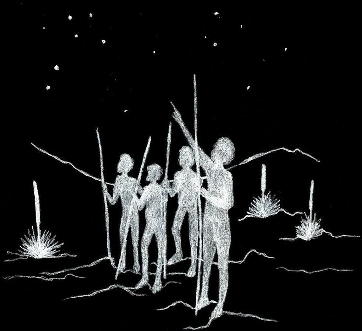 Australian Aboriginal Astronomy
