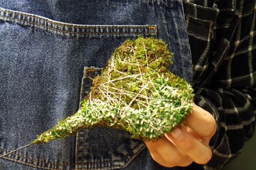 http://holmsundsblommor.blogspot.se/2014/10/tillverkning-av-mosshjarta.html Hur man gör ett mosshjärta med calluna