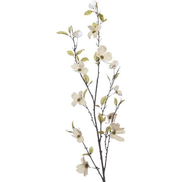 Pier 1 Imports Multi-colored Faux Canvas Dogwood Flower Branch ($12) ❤ liked on Polyvore featuring home, home decor, floral decor, fillers, flowers, plants, backgrounds, decor, saying and quotes