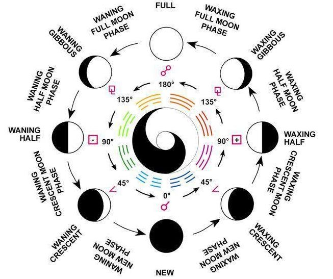Moon Phases Astroguide Moon Moon Phases Astrology