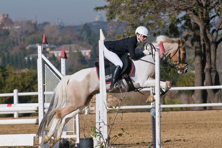 17 Best Images About Equestrian Diva Coutura On Pinterest