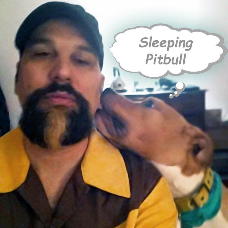 NSSWorld NSS Discography Sleep, Pitbulls, World