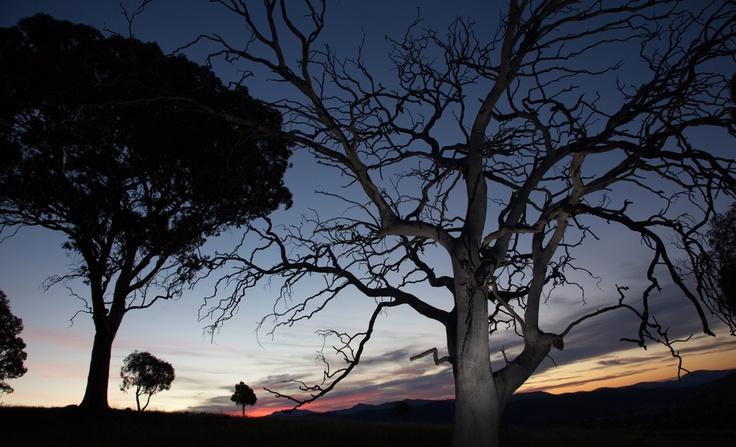 Sunset at Urambi Hills - Canberra - Australia