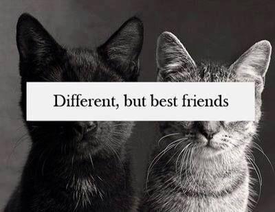 Odlišní, ale nejlepší přátel❤