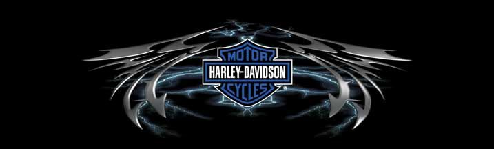 Harley Davidson Lightning Wing Rear Window Graphic Part #RWGHD131 | See thru Harley Davidson Rear Window Graphics & Harley Davidson Window Decals