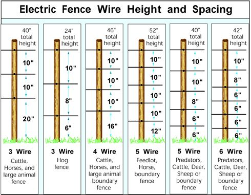 Elec Fence Heights - How Many Wire Strands do I Need?