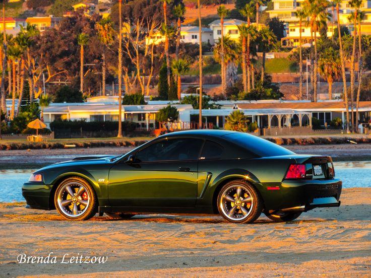Fiesta Island - 2001 Ford Mustang GT Bullitt