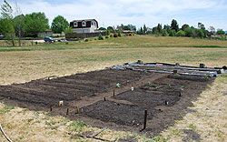 This lady gives a step by step guide to planning, prepping, and planting a garden.