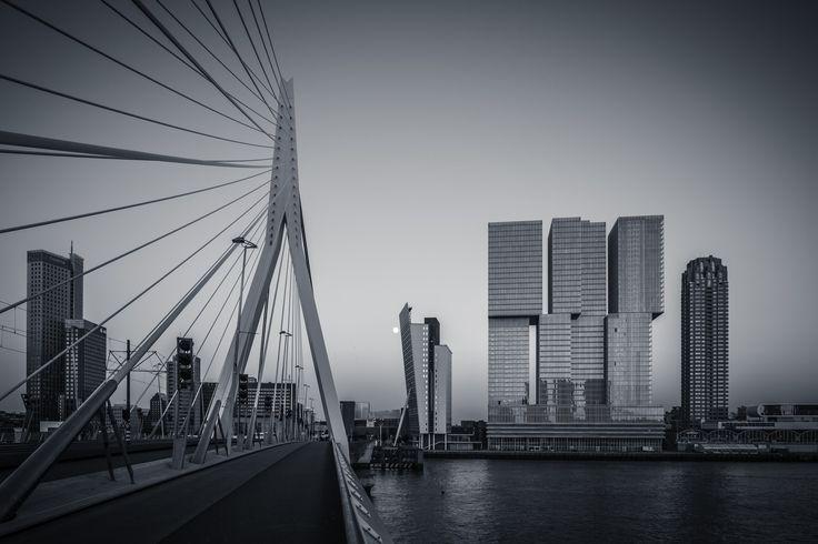 Rotterdam Skyline from Erasmus Bridge Selenium