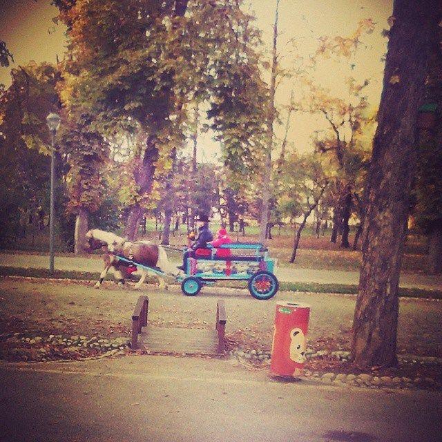 @Cluj Napoca 2014