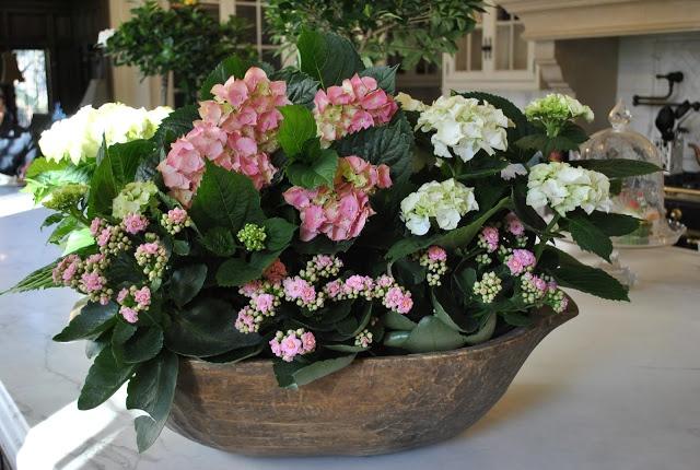 spring plant arrangement