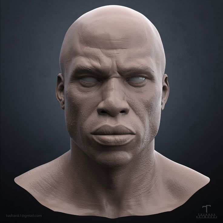 247 Best Images About Zbrush Head Sculpt On Pinterest