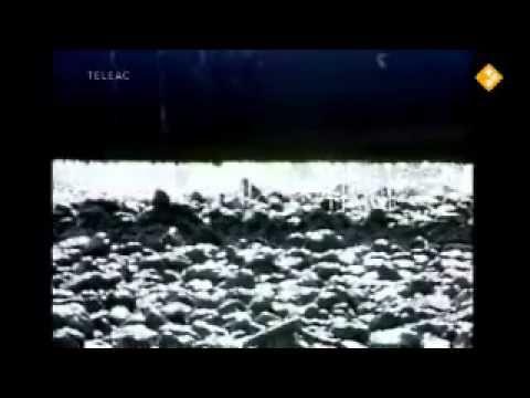Huisje Boompje Beestje - Wat een buizenboel (thema 'water') - YouTube