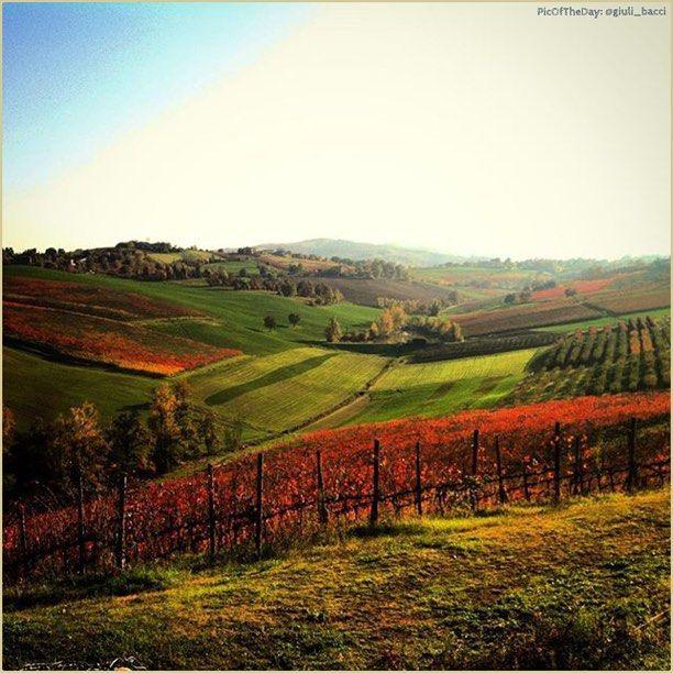 """""""È facile innamorarsi dell'Emilia""""  La #PicOfTheDay #turismoer di oggi allunga lo sguardo sulle colline reggiane d'autunno. Complimenti e grazie a @giuli_bacci / """"It's easy to fall in love with Emilia""""  Today's #PicOfTheDay #turismoer overlooks #ReggioEmilia's hills in Autumn. Congrats and thanks to @giuli_bacci"""
