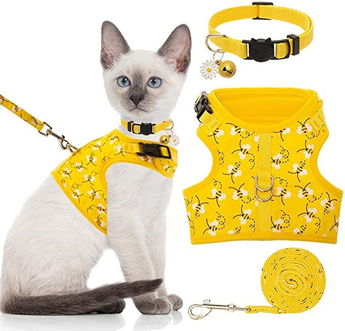 Cat Christmas Costumes, Christmas Cats, Best Cat Harness, Biking With Dog, Cat Leash, Cute Wild Animals, Cat Carrier, Cat Costumes, Cat Collars