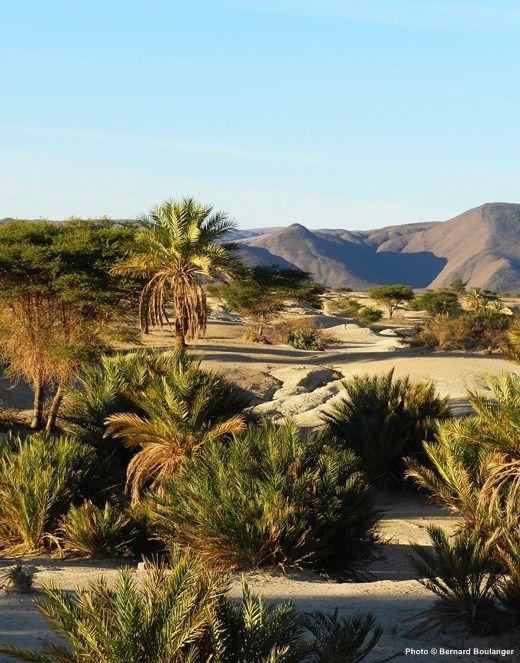 Icht, entre le versant sud de l'Anti-Atlas et le désert du Sahara, au Maroc