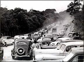 Avenida Miguel Stefano em dia de visitas  / Os 53 anos do Zoológico de São Paulo   GGN